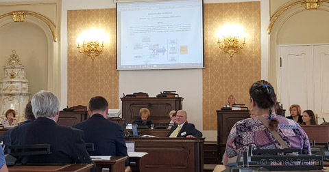 Public Hearing in the Petition Committee of the Chamber of Deputies of the Parliament of the Czech Republic on 25 September 2018